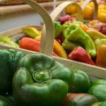 thumbnail slide for Vn farmers market1
